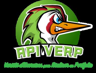 api verp logo web.png