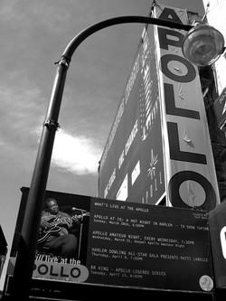 Apollo48X64(web)