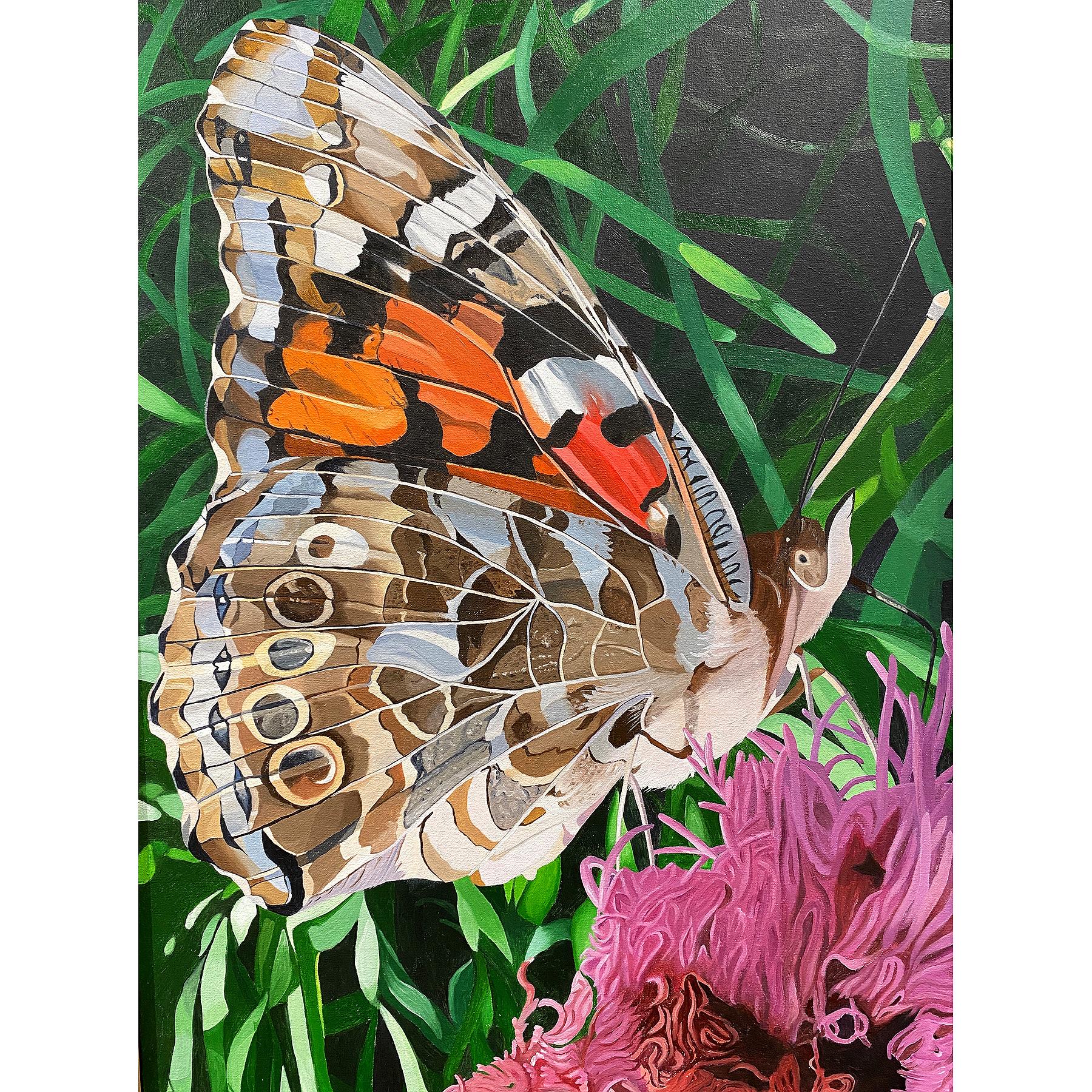Steinem_Painted Lady_oil_25x18_