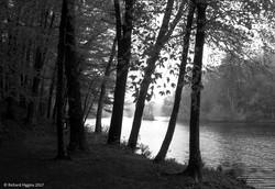 Thoreau-Richard Higgins_1.15b