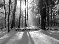 Thoreau-Richard Higgins_9.5