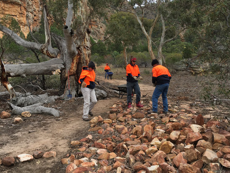 Pharos Gully Repair Project working bee – Sat 27th April, 2013