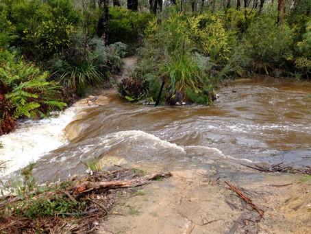 Grampians – Heavy rainfall alert