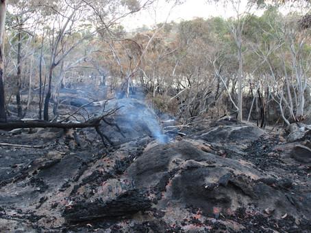 Grampians closure updates -Fire and Rainfall events. Black Hill closed
