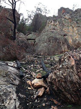 red-rocks-gully.jpg