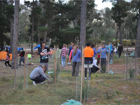 Queens Birthday Annual Planting Event 2018