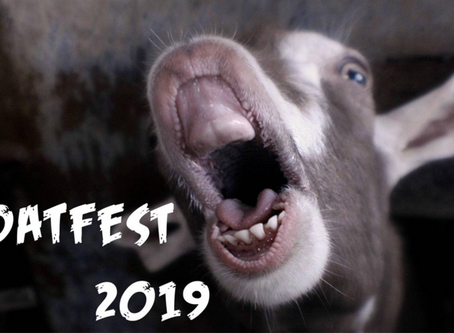 GOATFEST PRESENTS 'Town Hall' GRAMPIANS COMMUNITY UPDATE