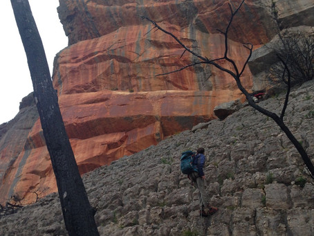 VCC/Cliffcare Statement: Potential Changes to Climbing Access in the Grampians