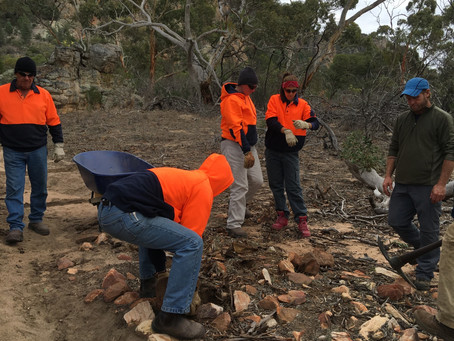 Pharos Gully project