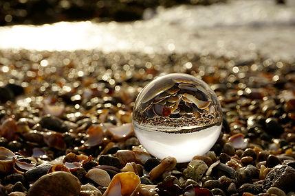 Shell Beach LB $65.jpg