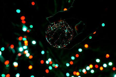 Christmas Lights $50.jpg