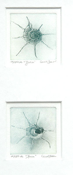 Yuca (front & back together) Etchings-ma
