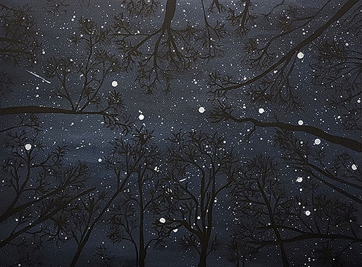When I turn off my flashlight and look up-Sandra Listorti-Acrylic-$450-FIRST PRIZE.jpg