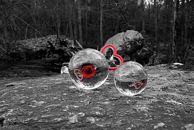 Double Vision $105.jpg