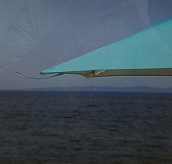 Aqua-Susan Parish-Photo-$50.jpg