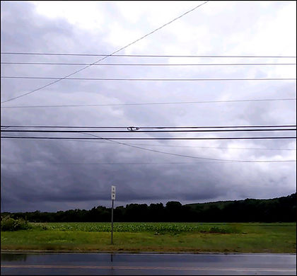 Summer Storm-Susan Parish-Photo-$50-THIRD PRIZE.jpg