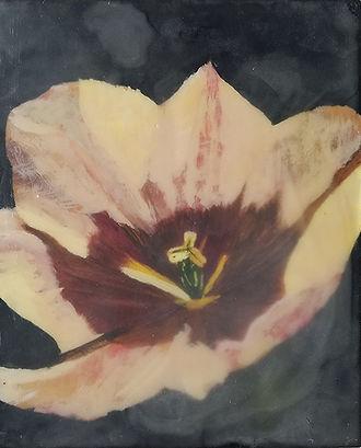 Blossoming-Lindsay Aromin-Encaustic on Birch-$299.jpg