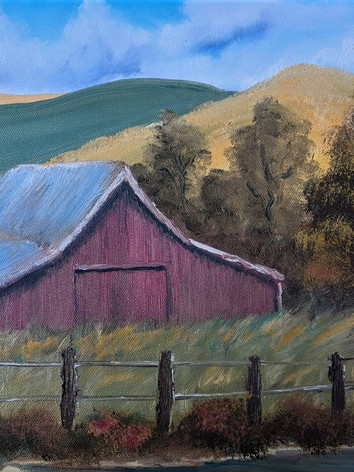 Summer in the Palouse