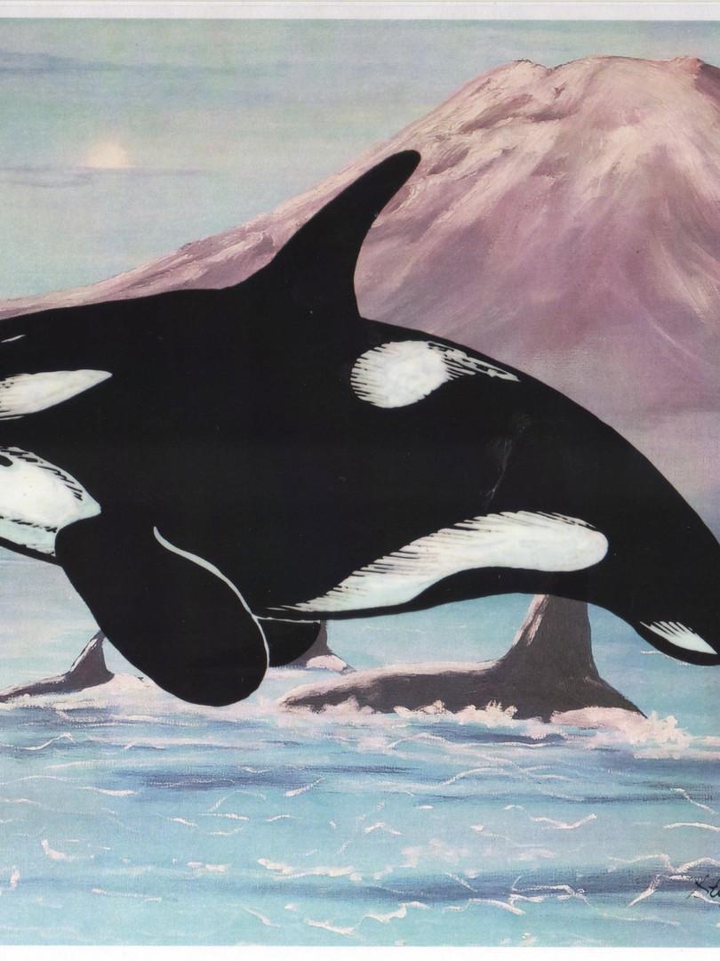 Orca Spirits.jpg