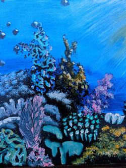 Coral I