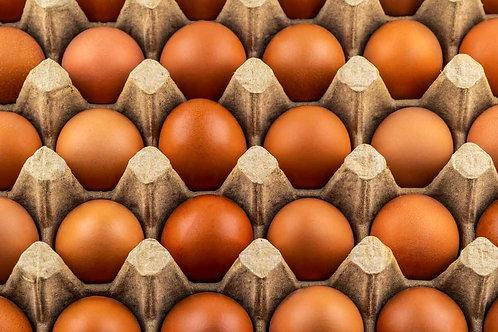 中号黄壳鸡蛋/30个
