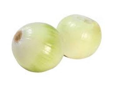 大洋葱(白色)/磅