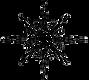 fleur de lis star