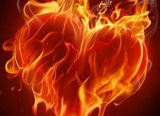 Hot Holistic Summer - Emotions