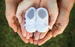 Holistic Fertility