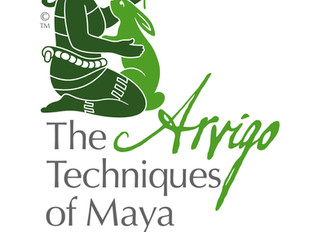 What is The Arvigo Techniques of Maya Abdominal Therapy®?
