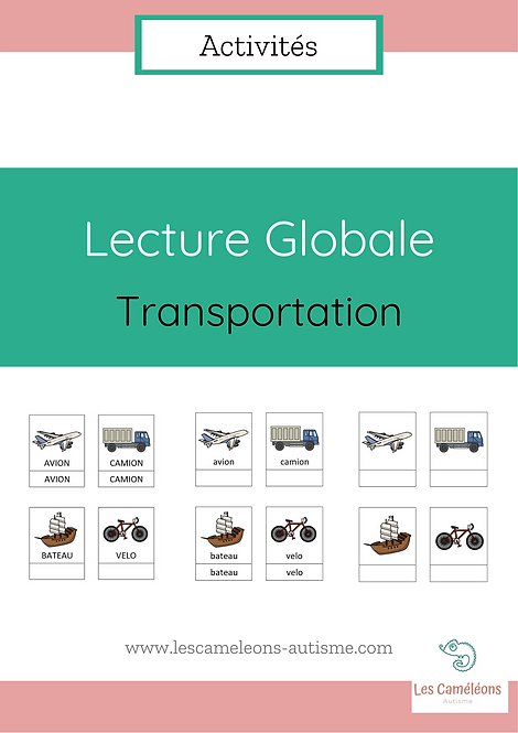 Lecture Globale : Transportation