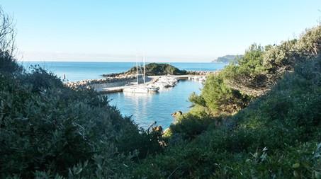 De la végétation sauvage, la mer, le ciel bleue et les bateaux
