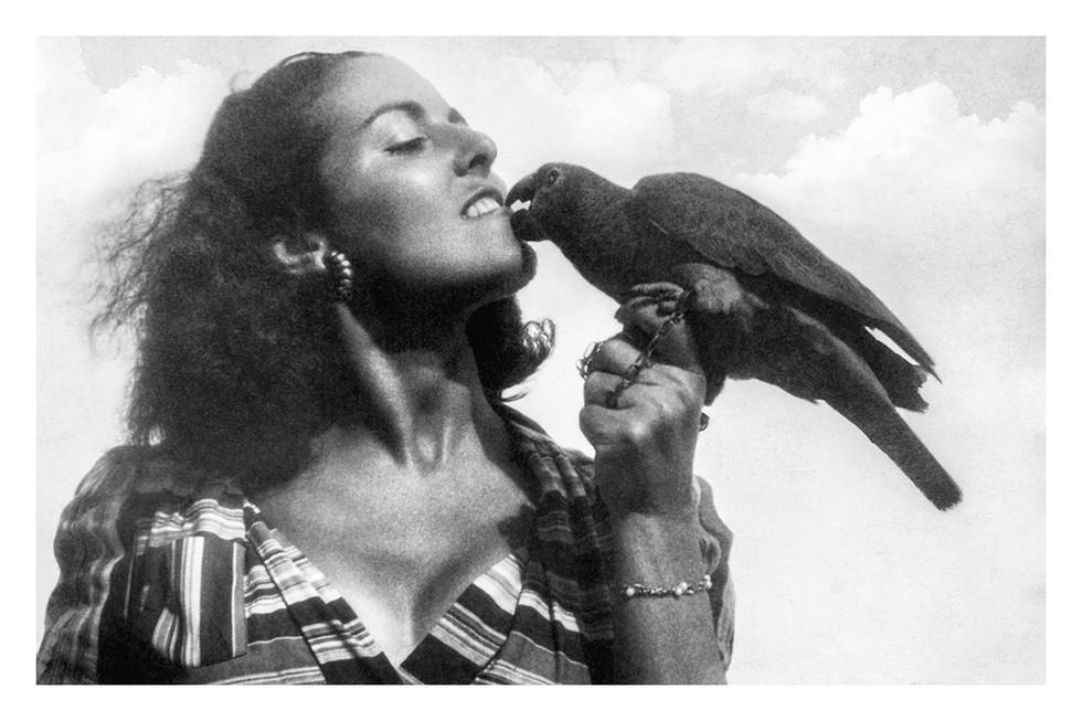 Avec mon perroquet nomé Carioca