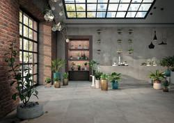 Des végétaux dans un intérieur