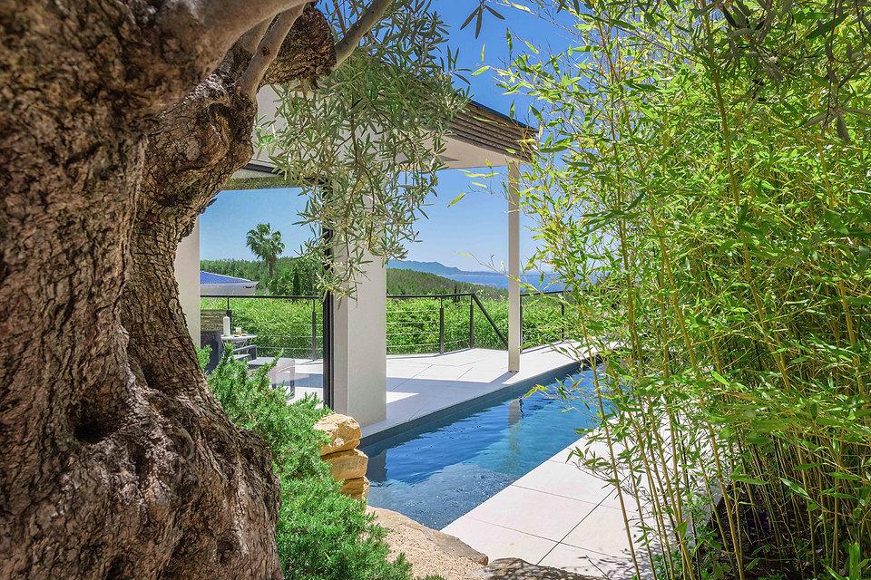 une piscine avec des bambous.jpg