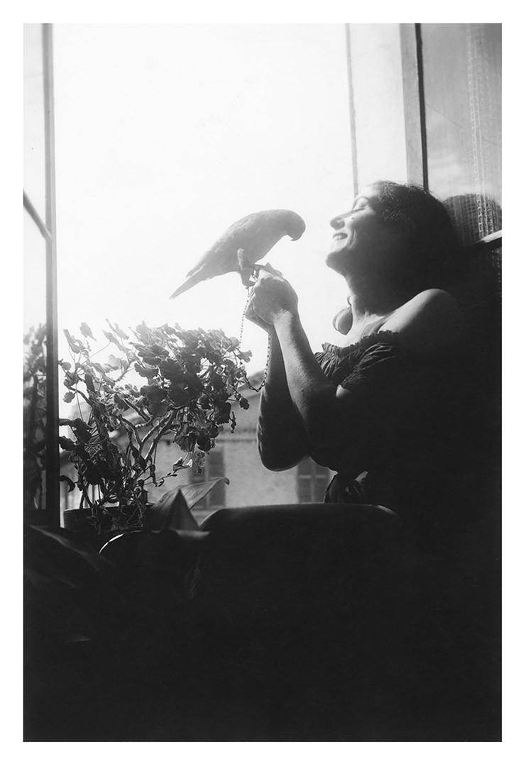 D'un vol d'oiseaux je t'envois mille baisers