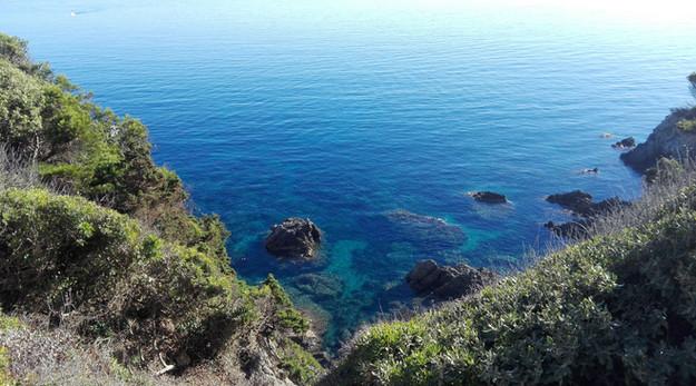 La beauté de l'océan et le respect d'un environement.