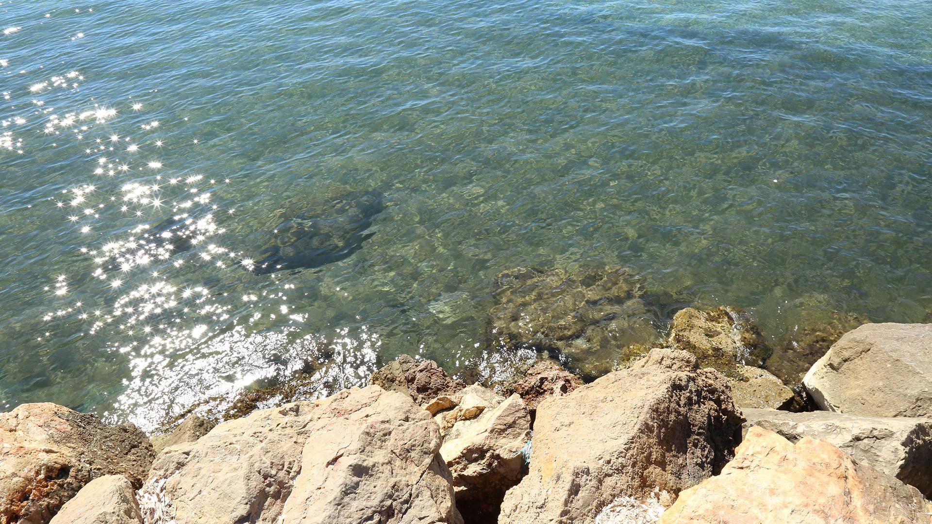 Photo de la mer, l'eau translucide
