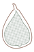 Ficus 1.png