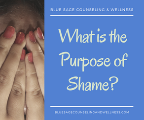 What is the Purpose of Shame?