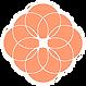 full orange icon.png