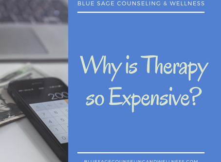 Why is Therapy so Expensive?