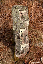 fence stone with C