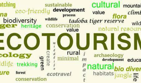 Ecoturismo e Turismo de Natureza, o que são e como se diferenciam?