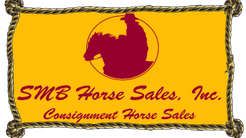 Introducing the New SMB Horse Sales Inc. Website!