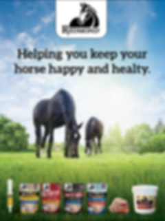 Equine product ad[6984].png