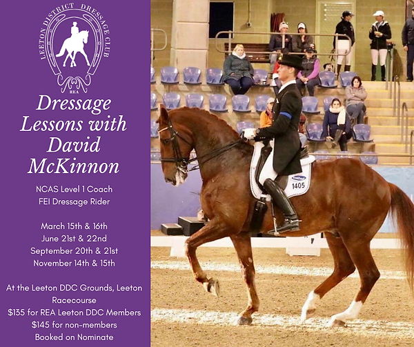 David McKinnon Dressage Lessons Purple.p