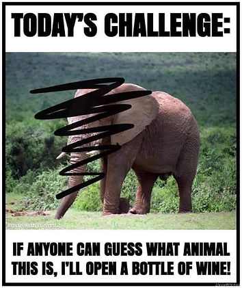 Wine Challenge Photo.jpg