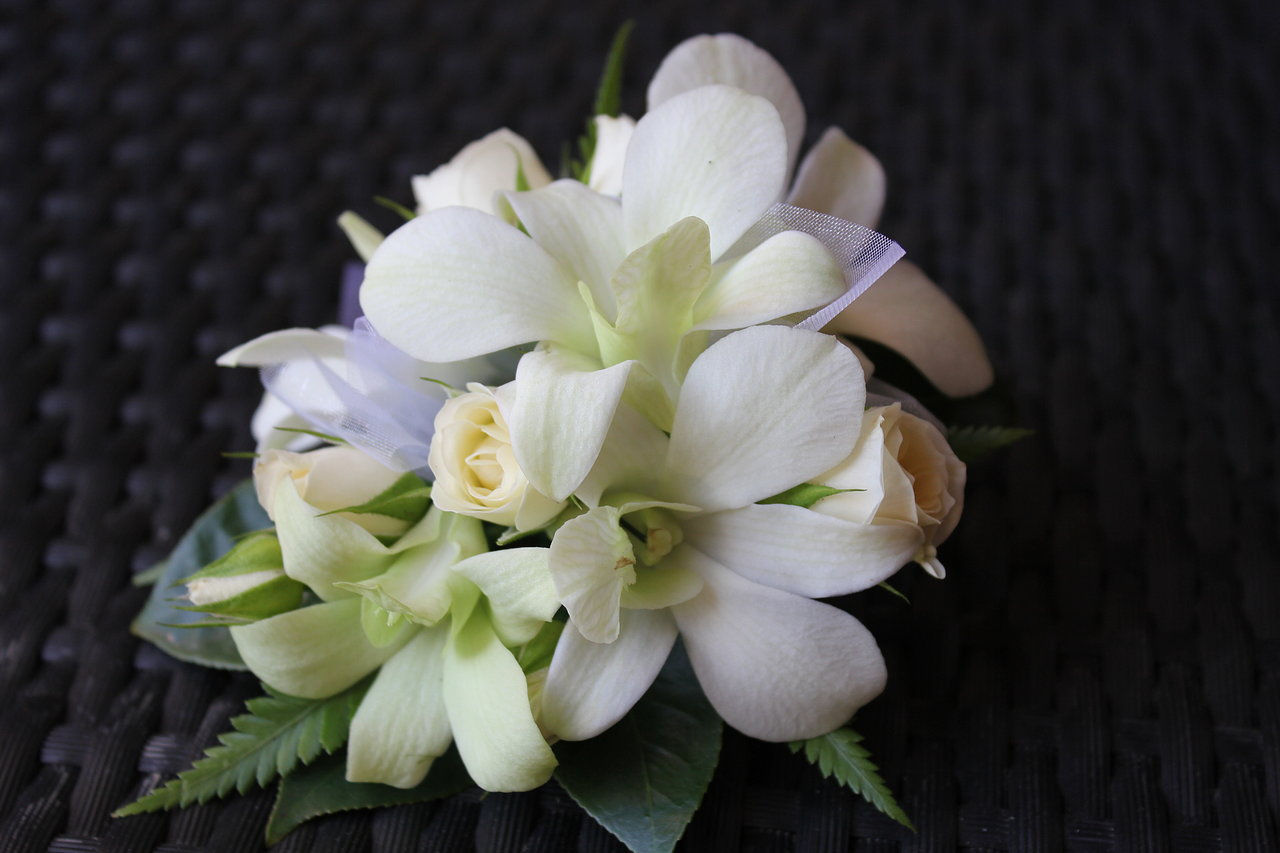 gaeroladid: White Orchid Corsage Images