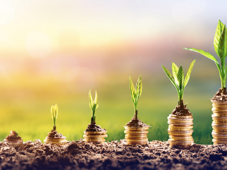 Are carbon credits (offsets) investable?